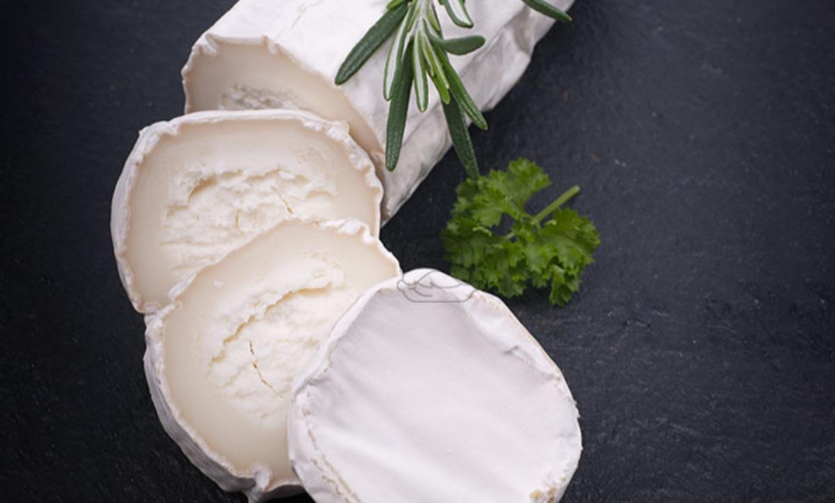 Chevre Plain Cheese