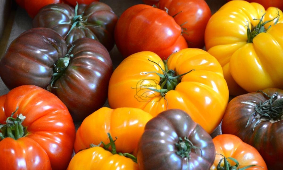 Tomato Heirloom Multi Color