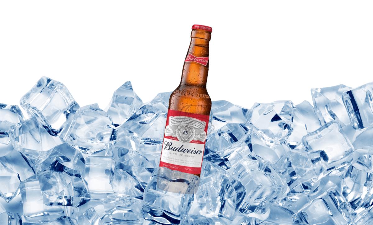 Budweiser (Bottle)